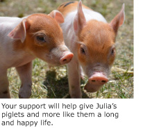 Help animals like Julia and her babies