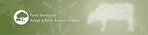 Adopt A Farm Animal This Holiday - AAFA