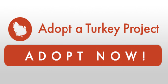 Adopt a turkey now for Thanksgiving