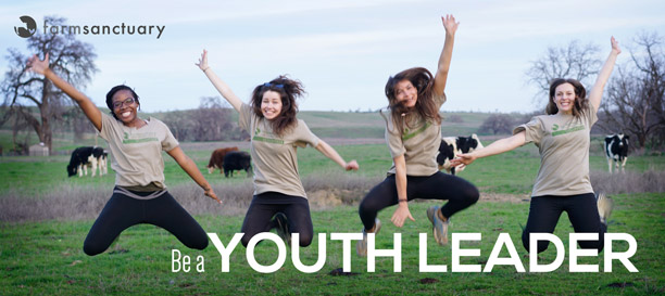Be a youth leader