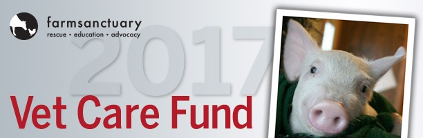 Donate to the 2017 Vet Care Fund