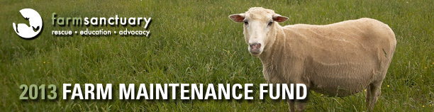 Support our 2013 Farm Maintenance Fund