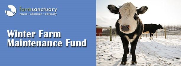 Winter Farm Maintenance Fund