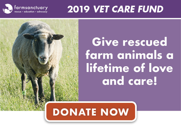 Give rescued farm animals a lifetime of love and care!