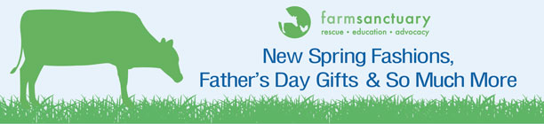 New Spring Fashions, Father's Day Gifts & So Much More