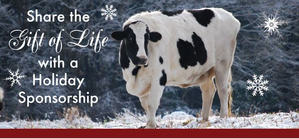 Share the Gift of Life