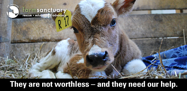 They are not worthless - and they need our help.